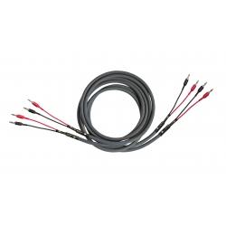 Kabel głośnikowy CARDAS Iridium Speaker