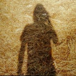 Steven Wilson - Unreleased Electronic Music, Tonefloat 2014